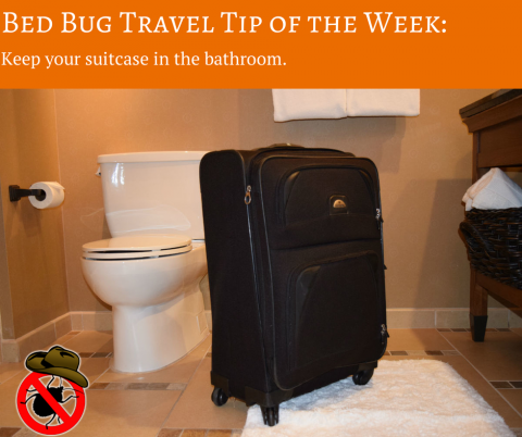 Put your suitcase in the bathroom