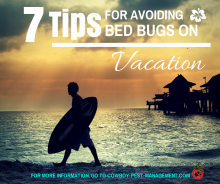 7 Tips for Avoiding Bed Bugs on Vacation